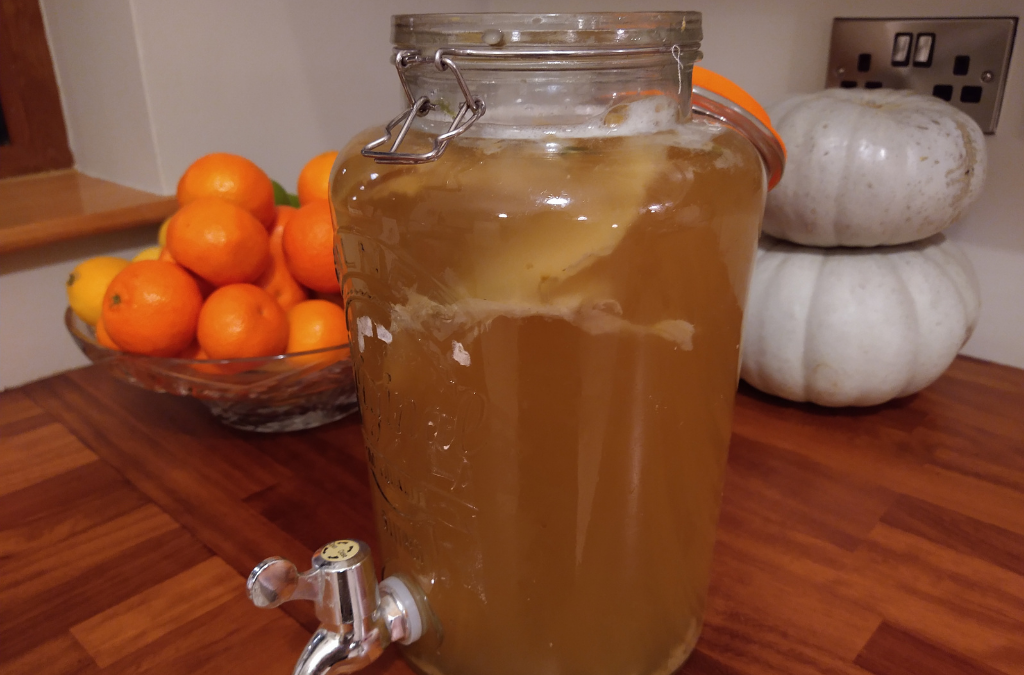 Gut loving Homemade Fizzy Kombucha